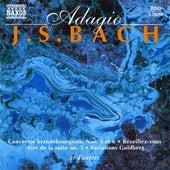 J.S. Bach: Adagio di Various Artists
