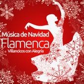 Música de Navidad Flamenca. Villancicos Con Alegría by Various Artists
