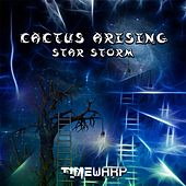 Star Storm by Various Artists