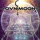 Trancemutation & Superlight in the Darkness Remixes by Various Artists