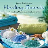 Healing Sounds: A Soothing Music Listening Experience by Gomer Edwin Evans
