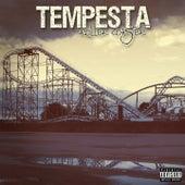 Roller Coaster by La Tempesta