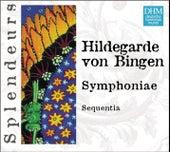 DHM Splendeurs: Bingen: Symphoniae de Sequentia