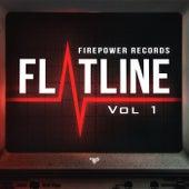 Flatline Vol 1 by Various Artists