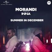 Summer In December de Morandi