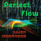 Perfect Flow by Julien Moorrees