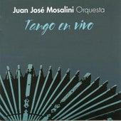 Tango en vivo (Live) by Various Artists
