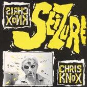 Seizure by Chris Knox