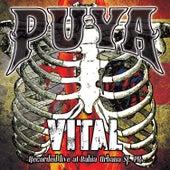 Vital de Puya