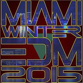 Miami Winter EDM 2015 de Various Artists