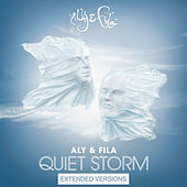 Quiet Storm (Extended Versions) by Various Artists
