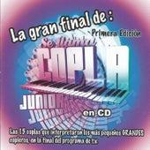 Se Llama Copla Junior, Primera Edición de Various Artists