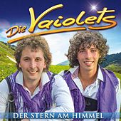 Der Stern am Himmel by Die Vaiolets