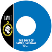 The Boys Of Cameo Parkway Vol. 1 by Various Artists