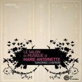 Le Salon de musique de Marie-Antoinette by Sandrine Chatron