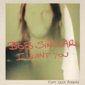 I Want You de Bob Sinclar