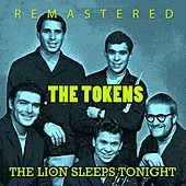The Lions Sleeps Tonight de The Tokens