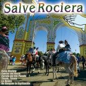 Salve Rociera de Various Artists