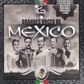 Grandes Voces de Mexico, Vol. 2 by Various Artists
