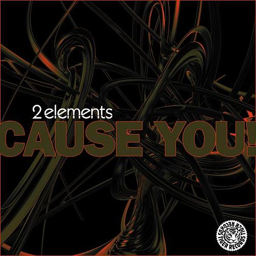 Cause You! (Remixes) by 2Elements