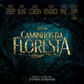 Caminhos da Floresta (Trilha Sonora Original do Filme) de Various Artists