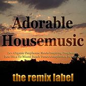 Adorable Housemusic (Organic Deephouse Meets Inspiring Proghouse Best Ibiza to Hot Miami Beach Tunes Compilation in Key-Ab Plus the Paduraru Megamix) de Various Artists