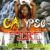 Calypso Fire, Vol. 3 de Various Artists