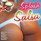 Splash Salsa by Various Artists