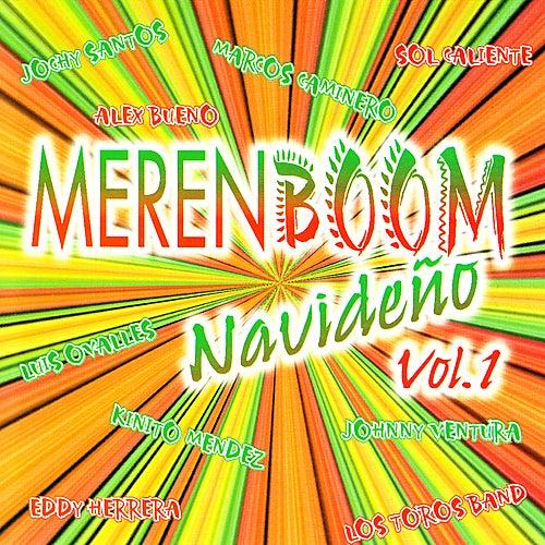 Merenboom Navideno, Vol. 1 by Various Artists