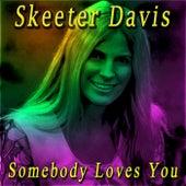Somebody Loves You de Skeeter Davis