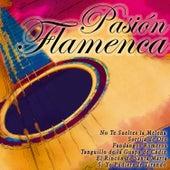Pasión Flamenca di Various Artists