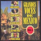 Grandes Voces de Mexico, Vol. 1 by Various Artists