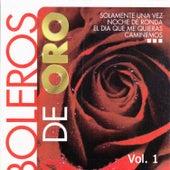 Boleros de Oro, Vol. 1 by Various Artists