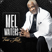 True Love by Mel Waiters