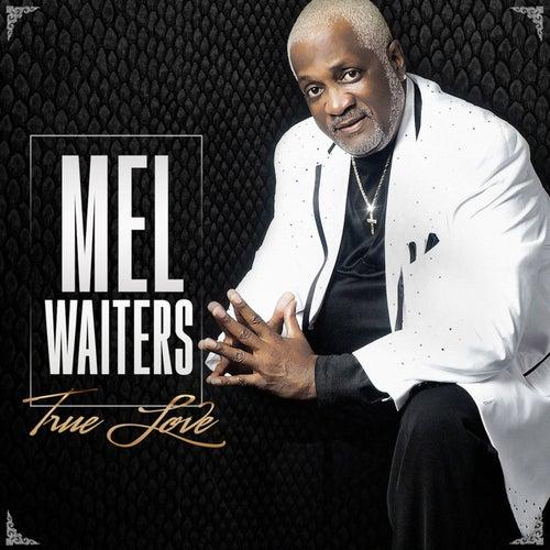 True Love by Mel Waiters