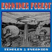 Temples & Pyramids by Eshniner Forest