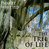 The Tree of Life by Pharez Whitted