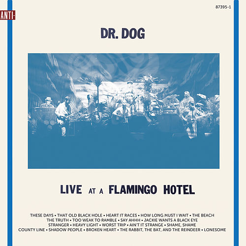 Live At A Flamingo Hotel by Dr. Dog