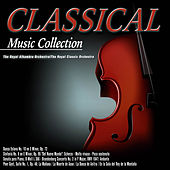 Classical Music Collection de The Royal Classic Orchestra