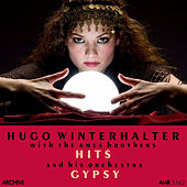 Hits & Gypsy de Various Artists