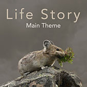 Life Story Main Theme - Single by L'orchestra Cinematique