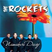 Namakwa Daisy de The Rockets