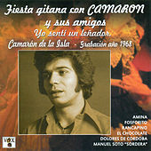 Fiesta Gitana Con Camarón y Sus Amigos. Yo Sentí un Leñador von Various Artists