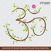 Om - An Hour of Divine Relaxation & Rejuvenation by Ricky Kej