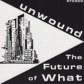 The Future Of What by Unwound