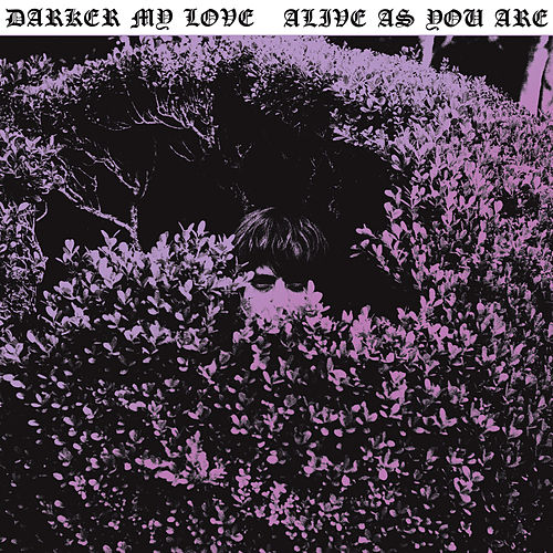 Alive as You Are by Darker My Love