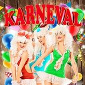 Karneval de Various Artists