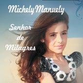 Senhor de Milagres de Michely Manuely