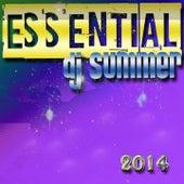 Essential DJ Summer 2014 (Top 50 Dance Hits - Ibiza, Miami) von Various Artists
