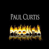 Pyrocantha by Paul Curtis